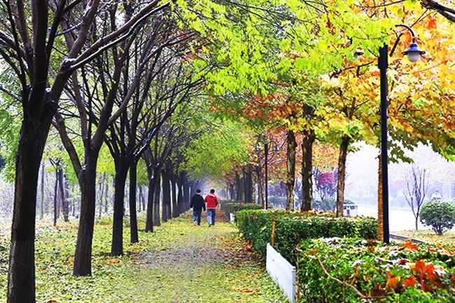 03觉人间,万事到秋来,都摇落。《满江红·游南岩和范廓之韵》.jpg